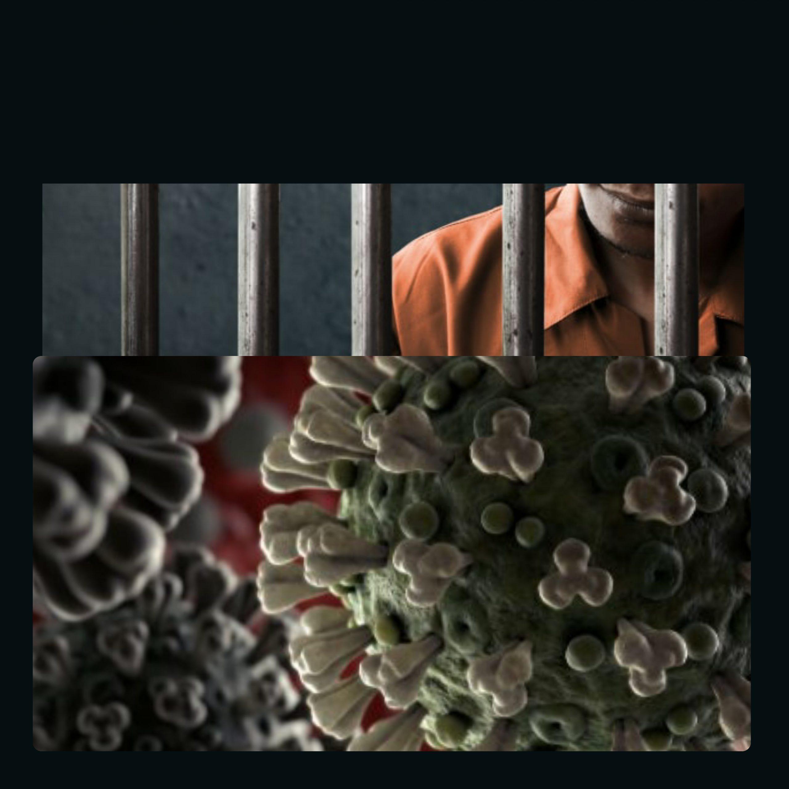 One year jail for spreading rumours on coronavirus